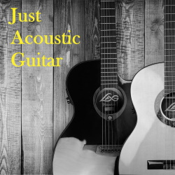 Just Acoustic Guitar